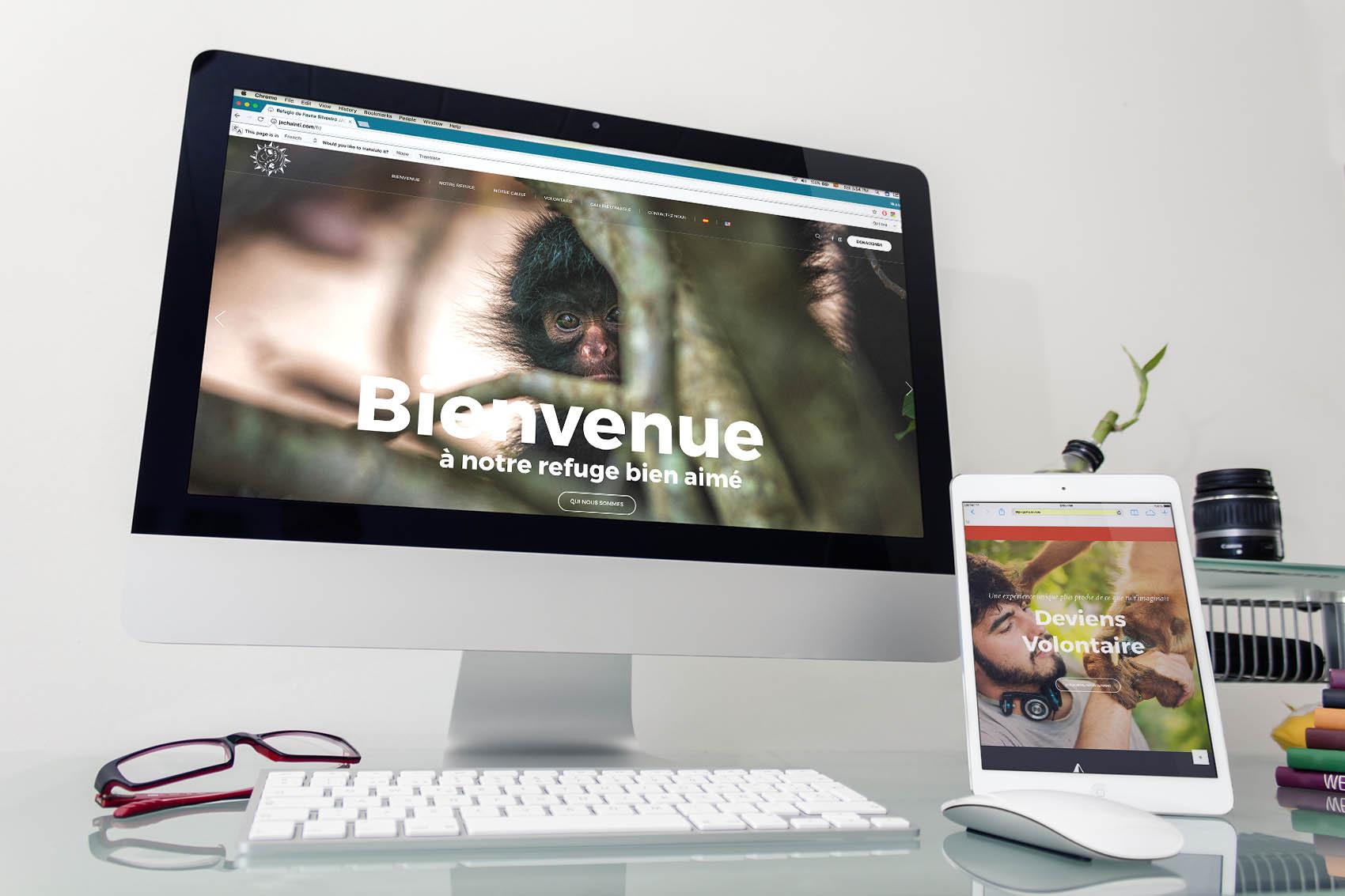 Así se ve la Web en Francés